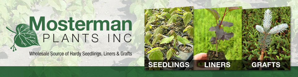 Mosterman Plants Inc